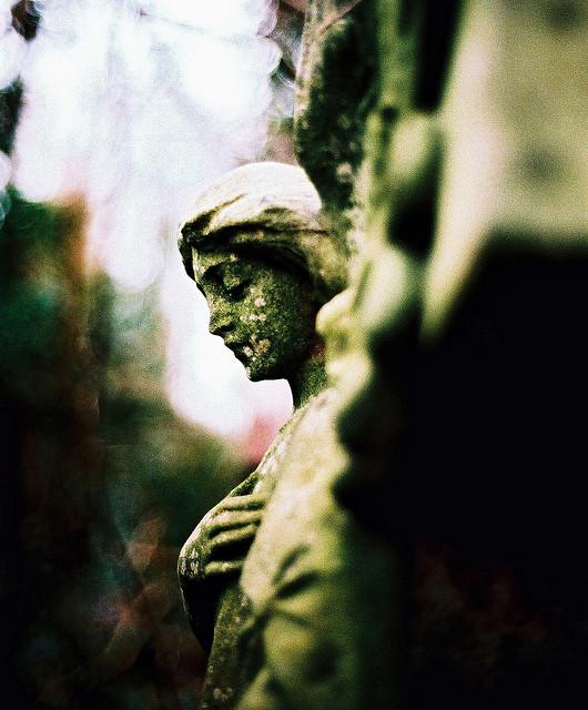 Flickr: El Freddy