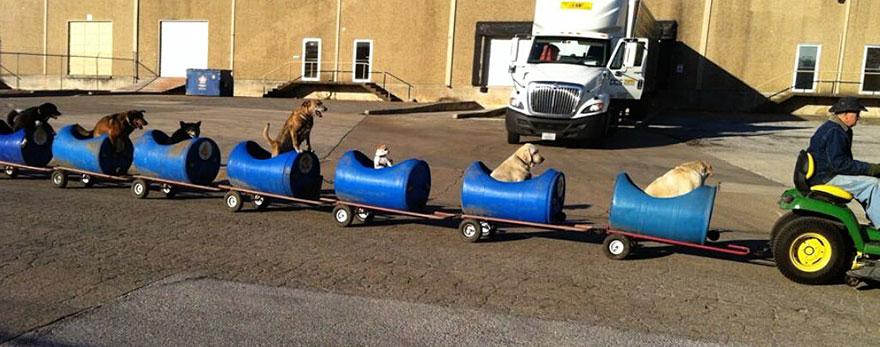 el tren de los perros de texas 1