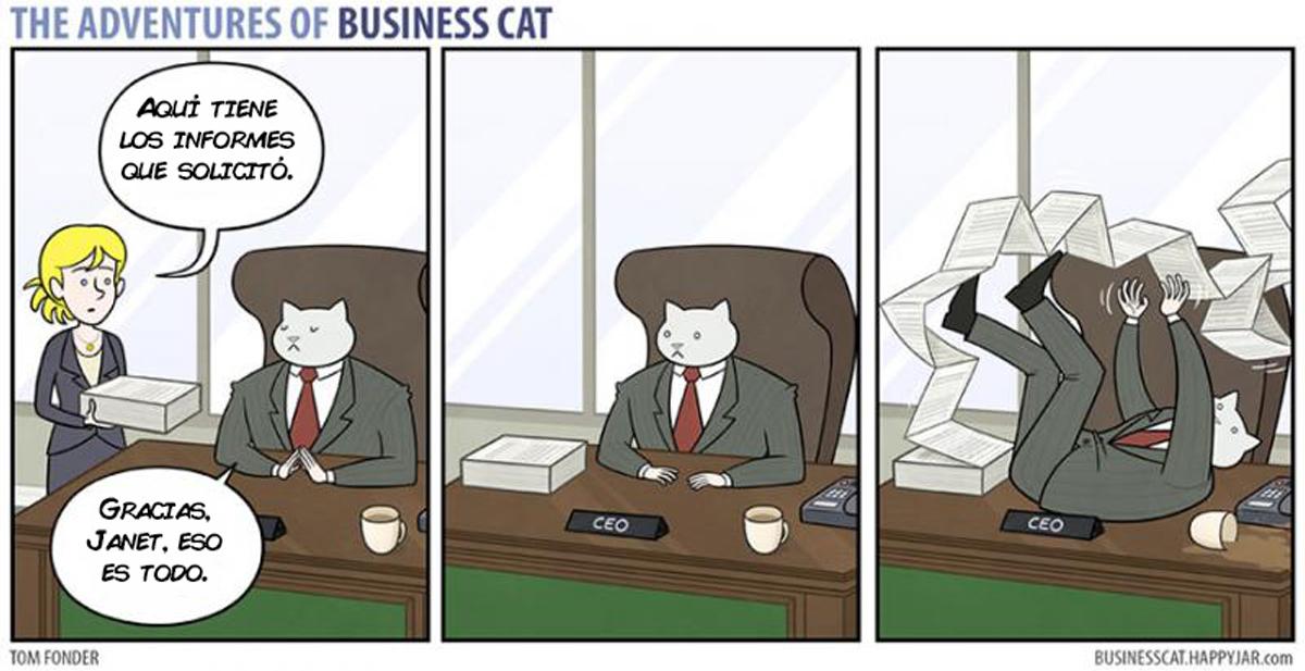 gato-empresario