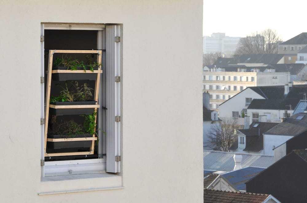 huerto para ventanas 4