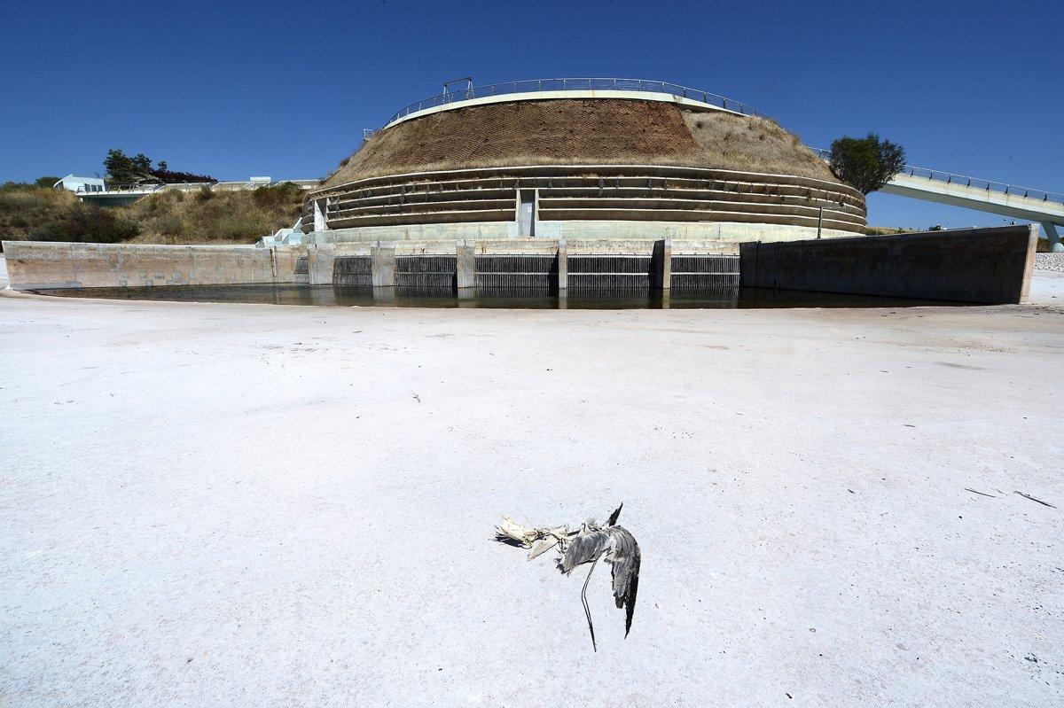 instalaciones olimpicas abandonadas 34