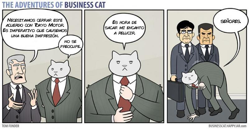 las aventuras de un gato jefe 13