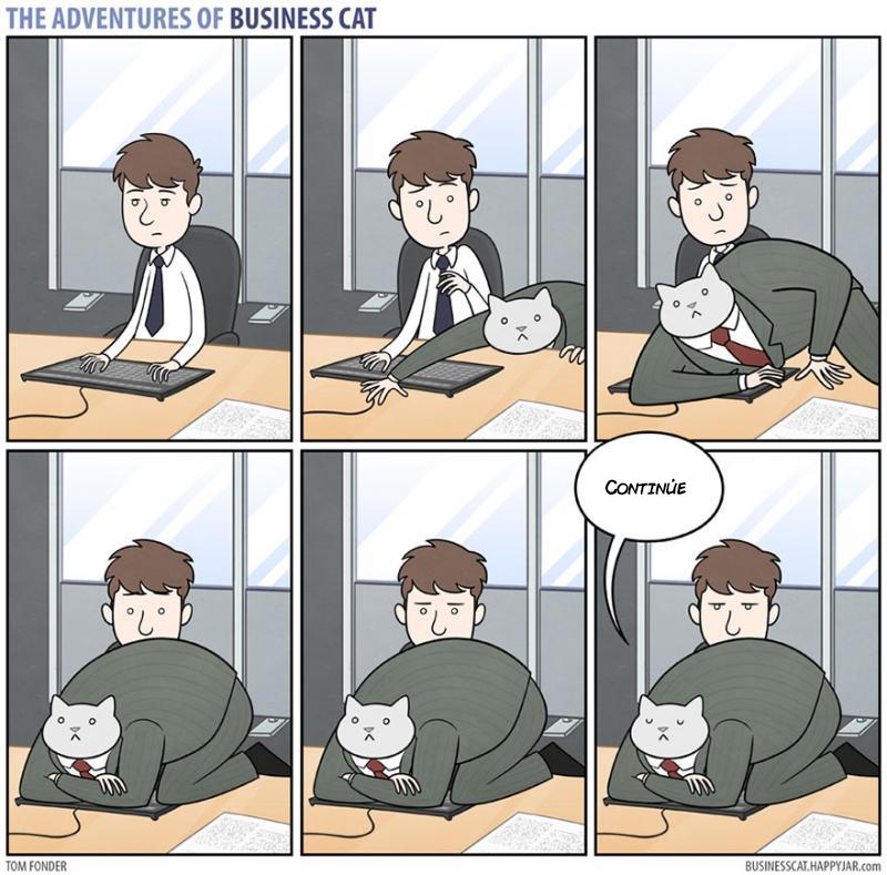 las aventuras de un gato jefe 14