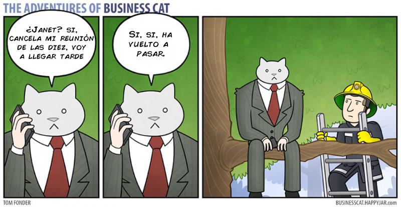las aventuras de un gato jefe 3