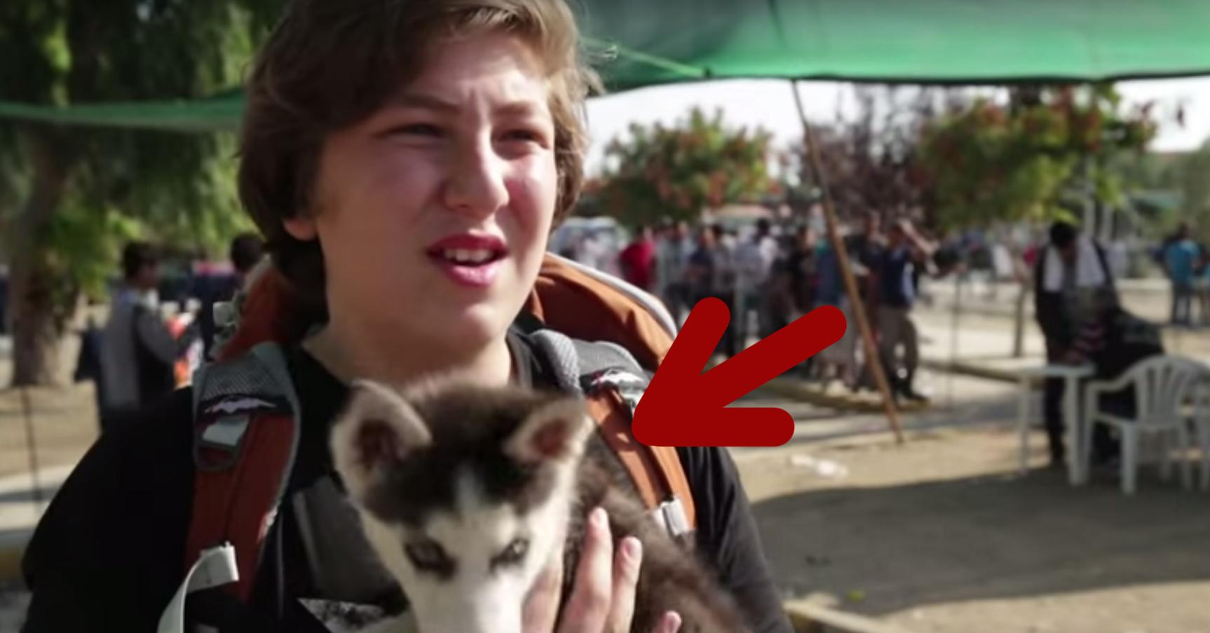 refugiado-cachorro-portada