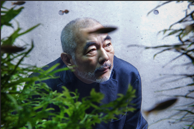aquascaping de takashi amano el artista de la decoracion de acuarios 1