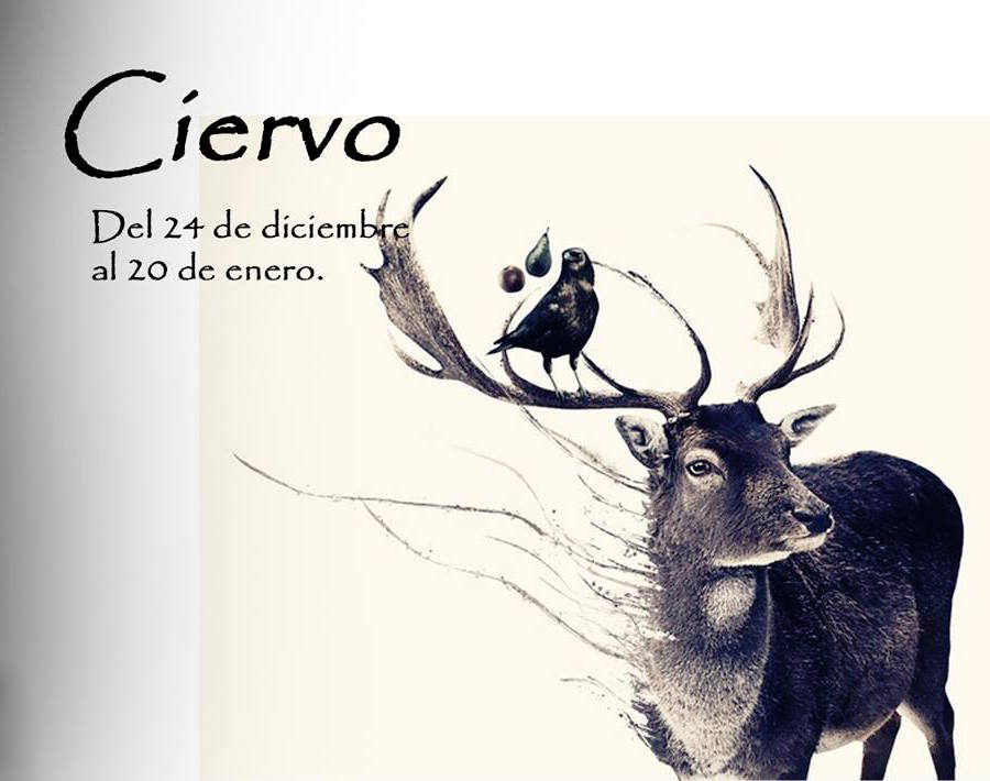 horoscopo celta de los animales 1