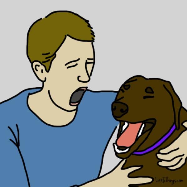 perros demostrando amor 2