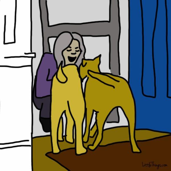 perros demostrando amor 7