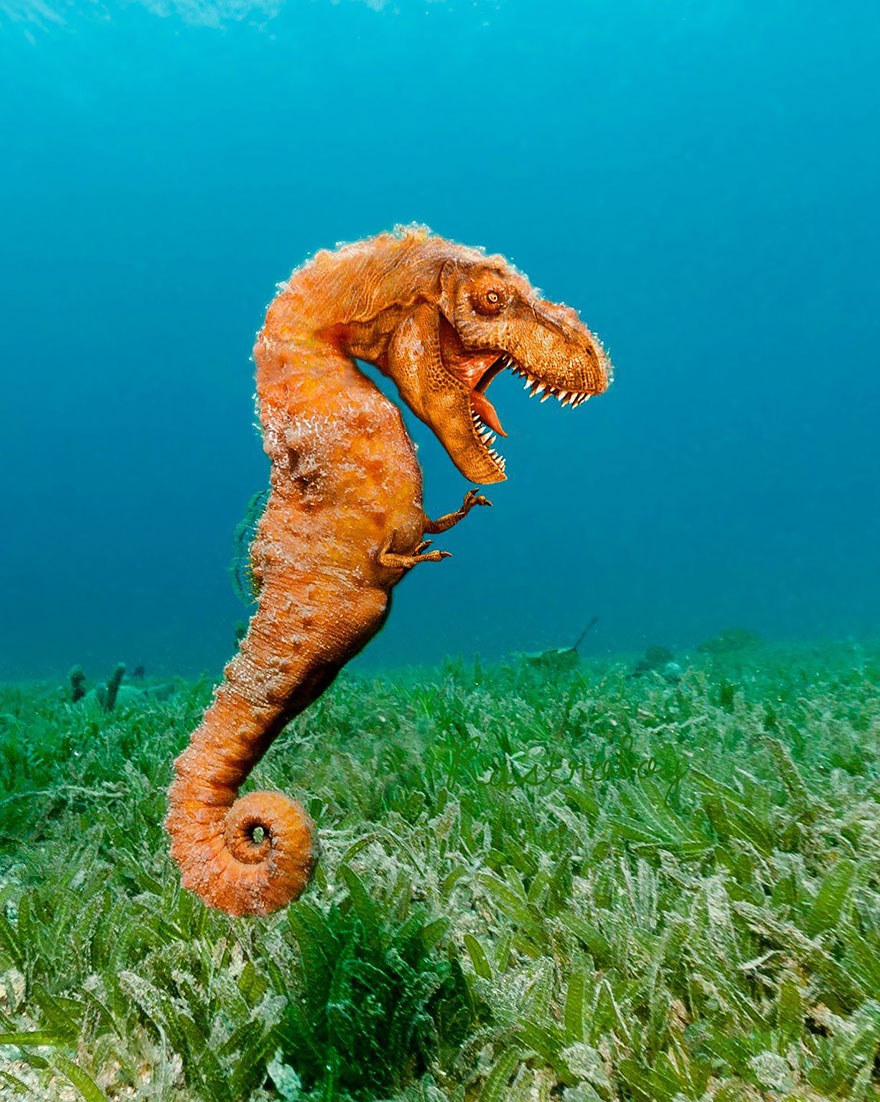 animales creados artificialmente con photoshop 6
