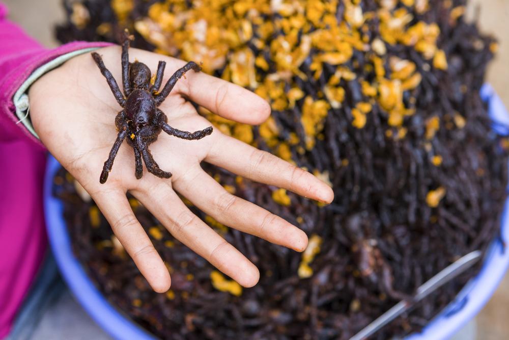 tarantulas fritas