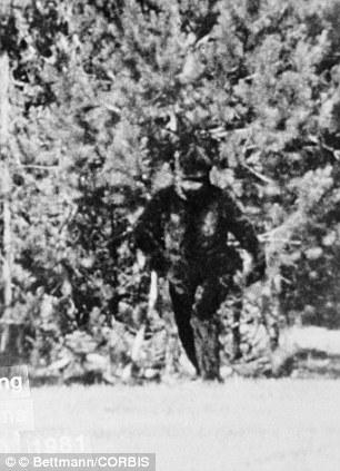 Fotografía de un Bigfoot tomada en 1932 en los bosques de California por Thomas Bacardi.