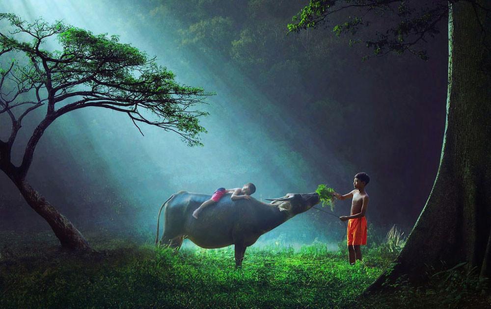 imagenes de una extraordinaria belleza 9
