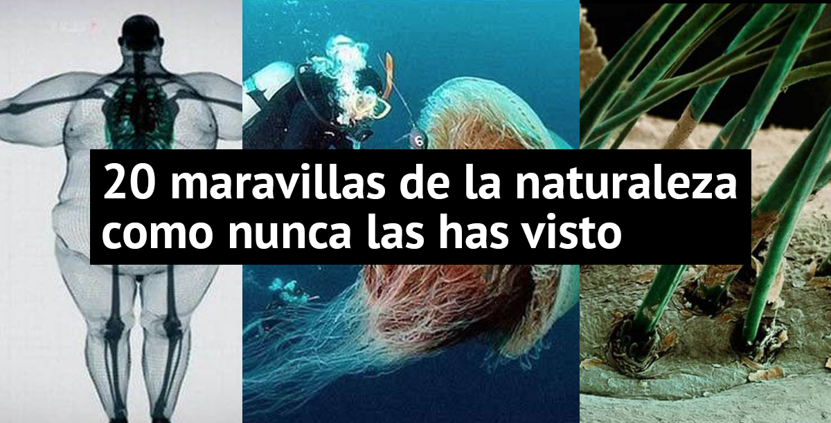naturaleza-increibles