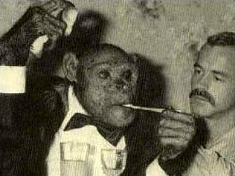 oliver el chimpace humano 8