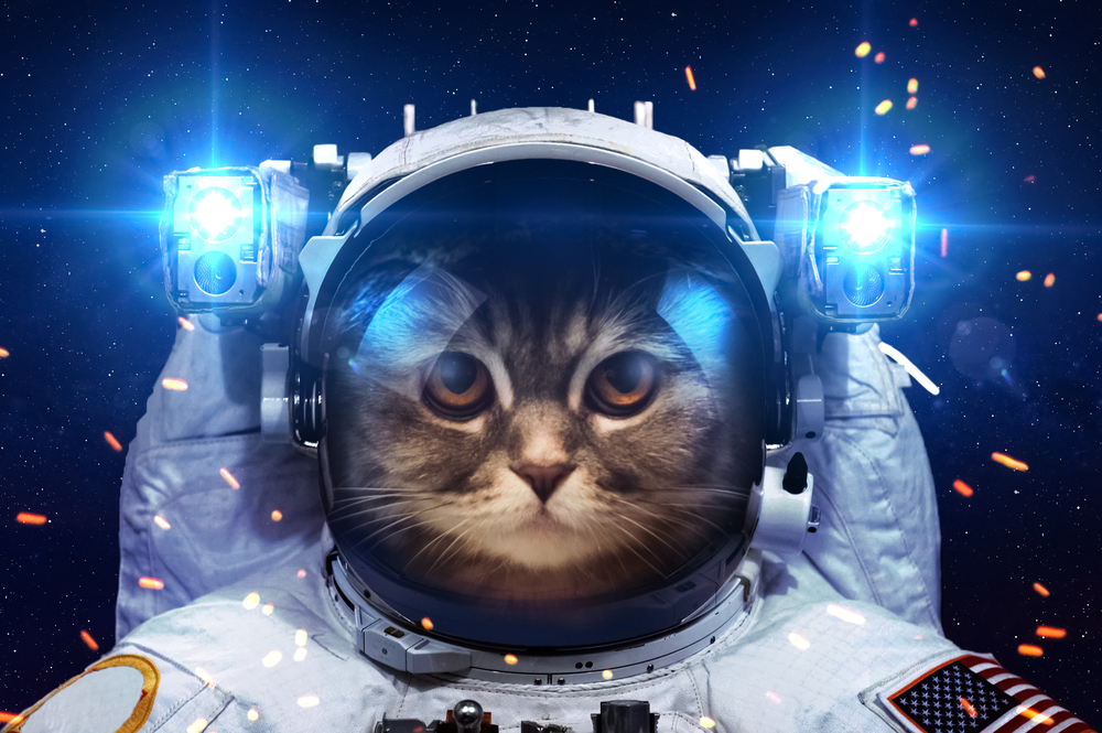 requisitos para ser astronauta 3
