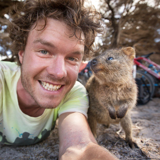 selfies con animales 20