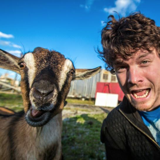 selfies con animales 23