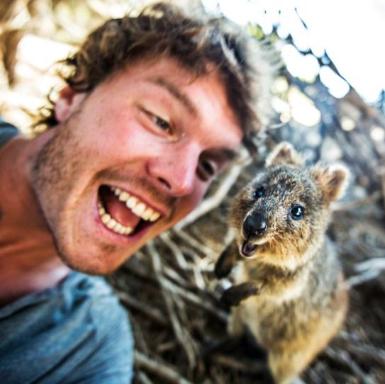 selfies con animales 27