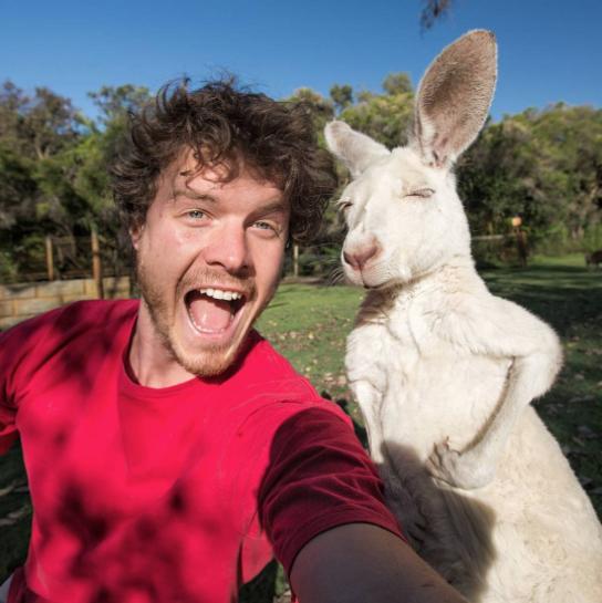 selfies con animales 3