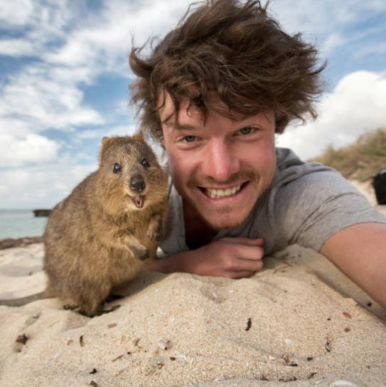 selfies con animales 6