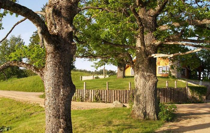 sun city, la ciudad de lituania ecologicamente sostenible creada por un millonario 10