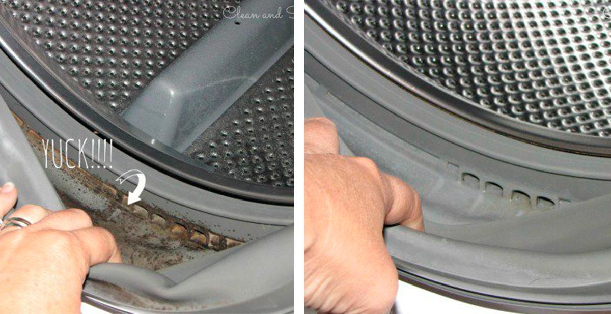 truco para eliminar el moho de la lavadora