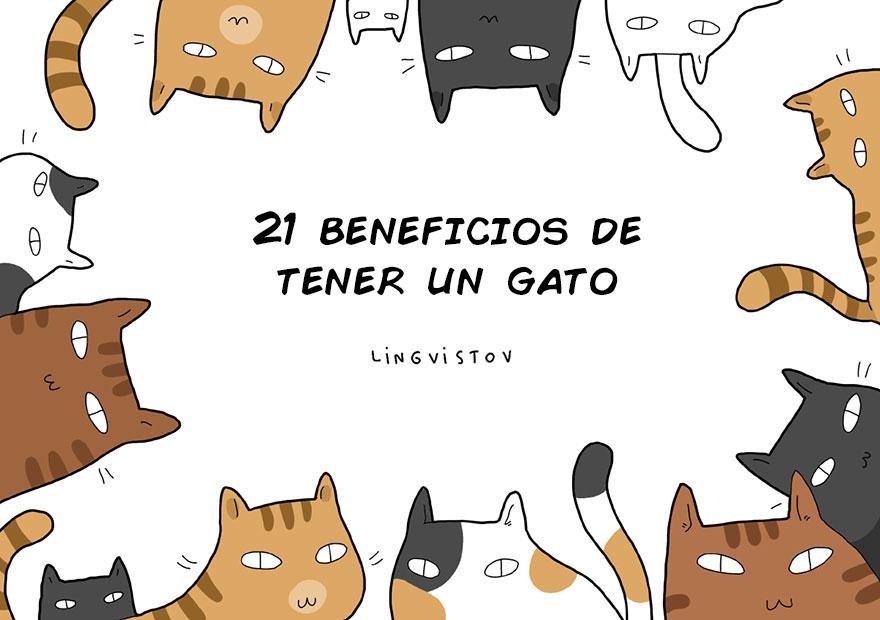 Beneficios de tener un gato como mascota