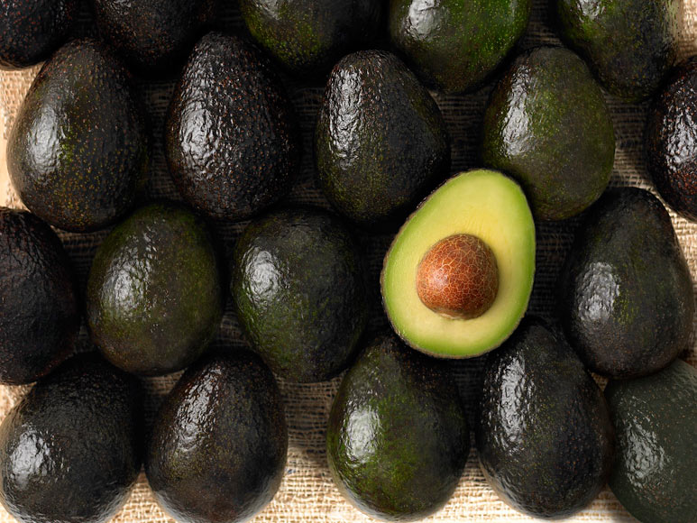 aguacates_4