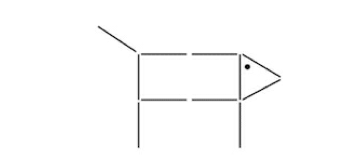 el acertijo del perro y las lineas 2