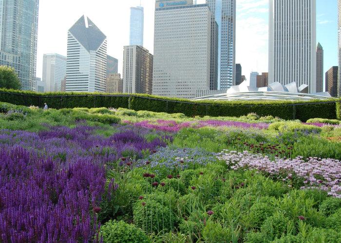 Un fragmento del Edén en la gran ciudad: 23 magníficos jardines de ...