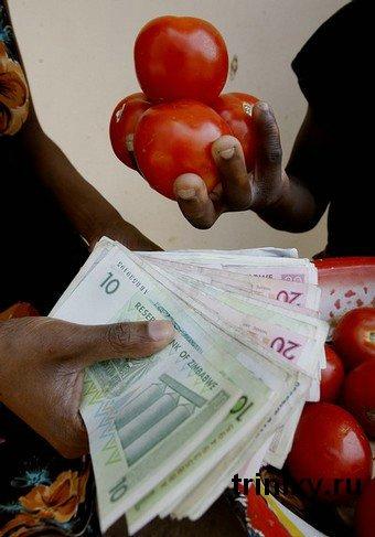 moneda crisis zimbabwe 23