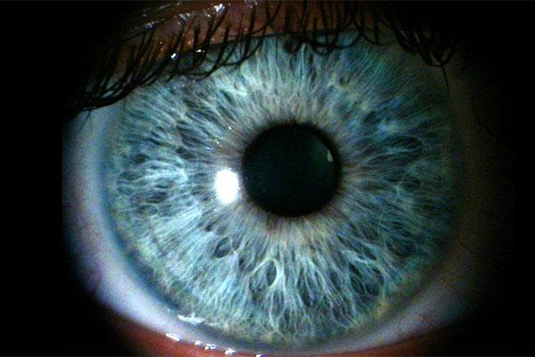 ojos azules 9