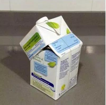 reciclar tetrabrick 5