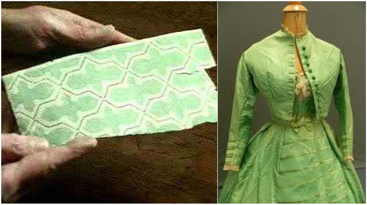 verde sheelel