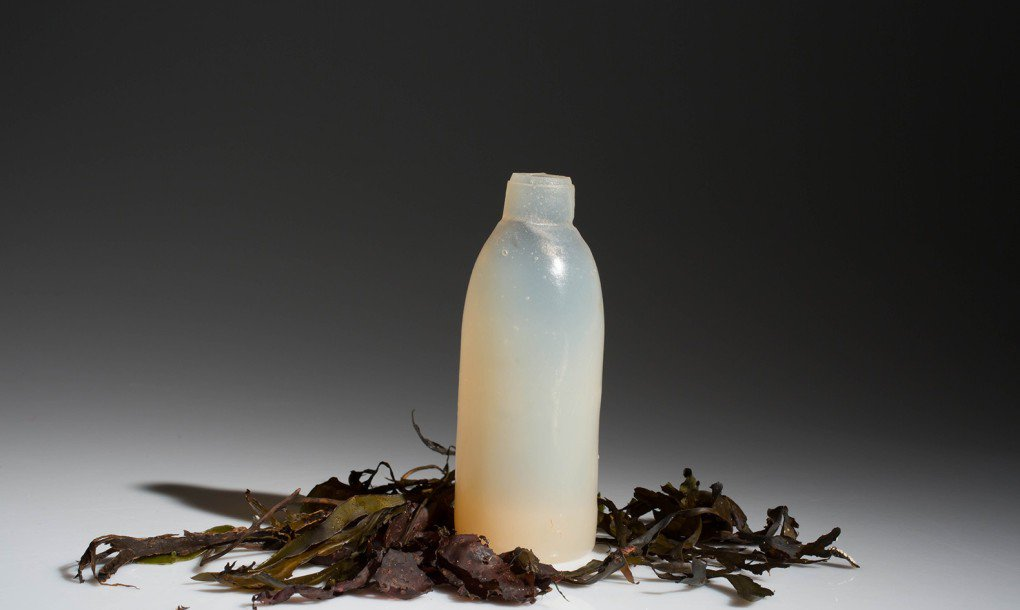 Algae-Water-Bottle-Biodegradable-1020x610