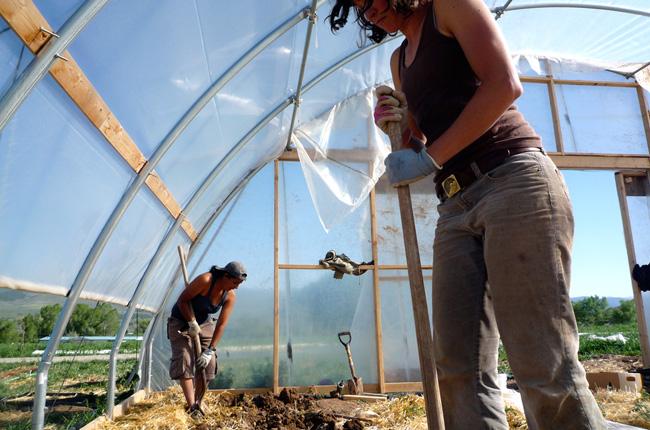 agricultura colaborativa 22