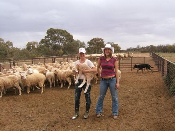 agricultura colaborativa 6