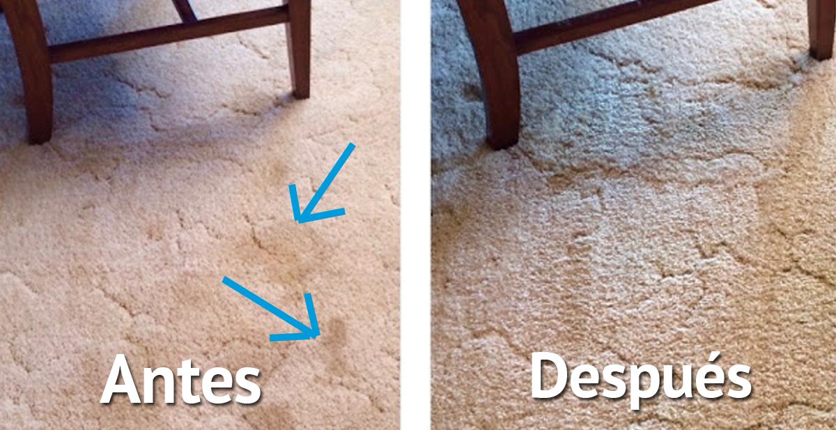 alfombra_portada