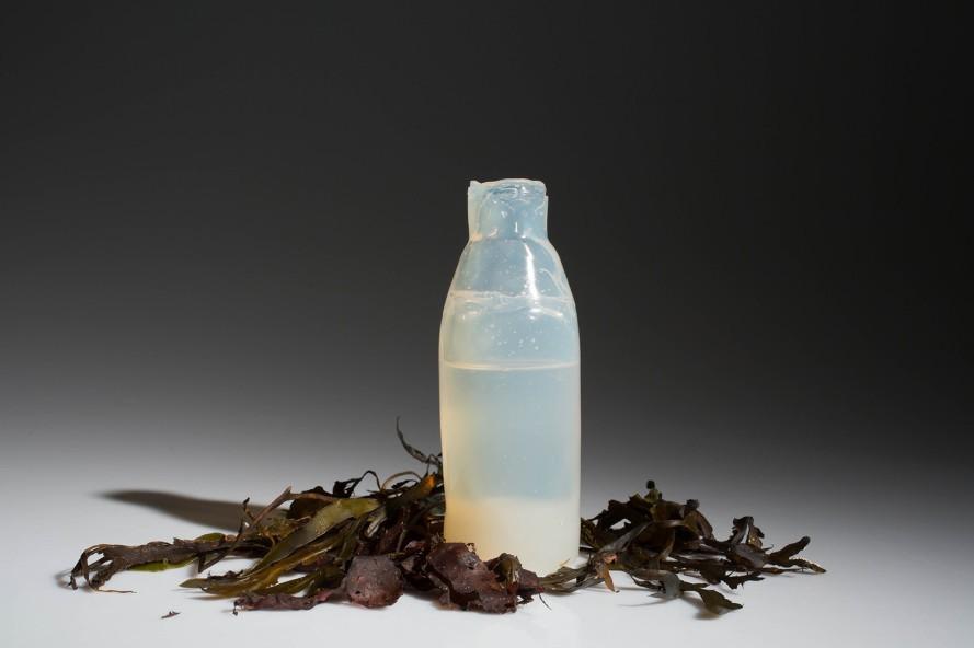 botella comestible 2