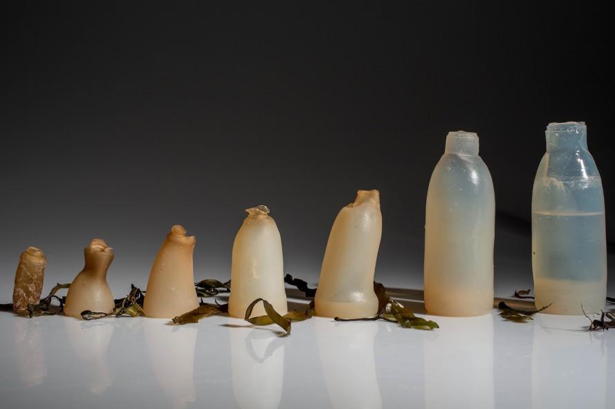 botella comestible 3