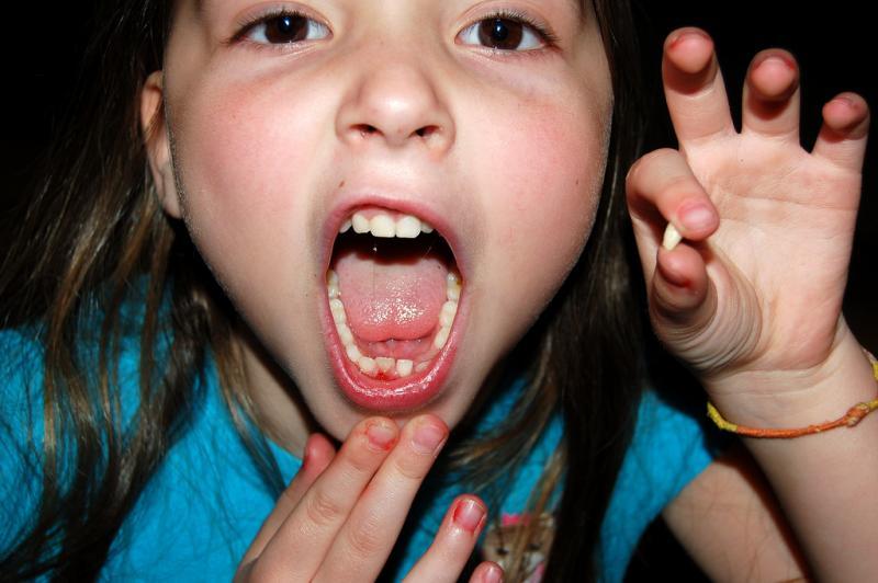 celulas_madre_dentales_7