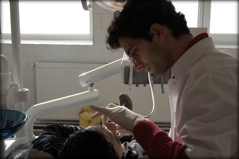 celulas_madre_dentales_8