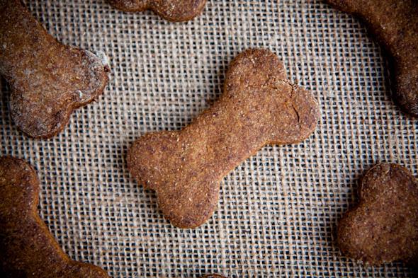 galletas perro 1