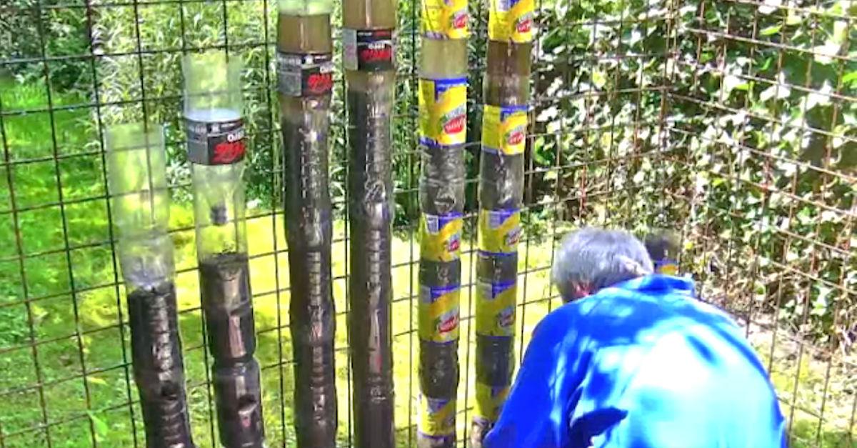 jardin-con-botellas