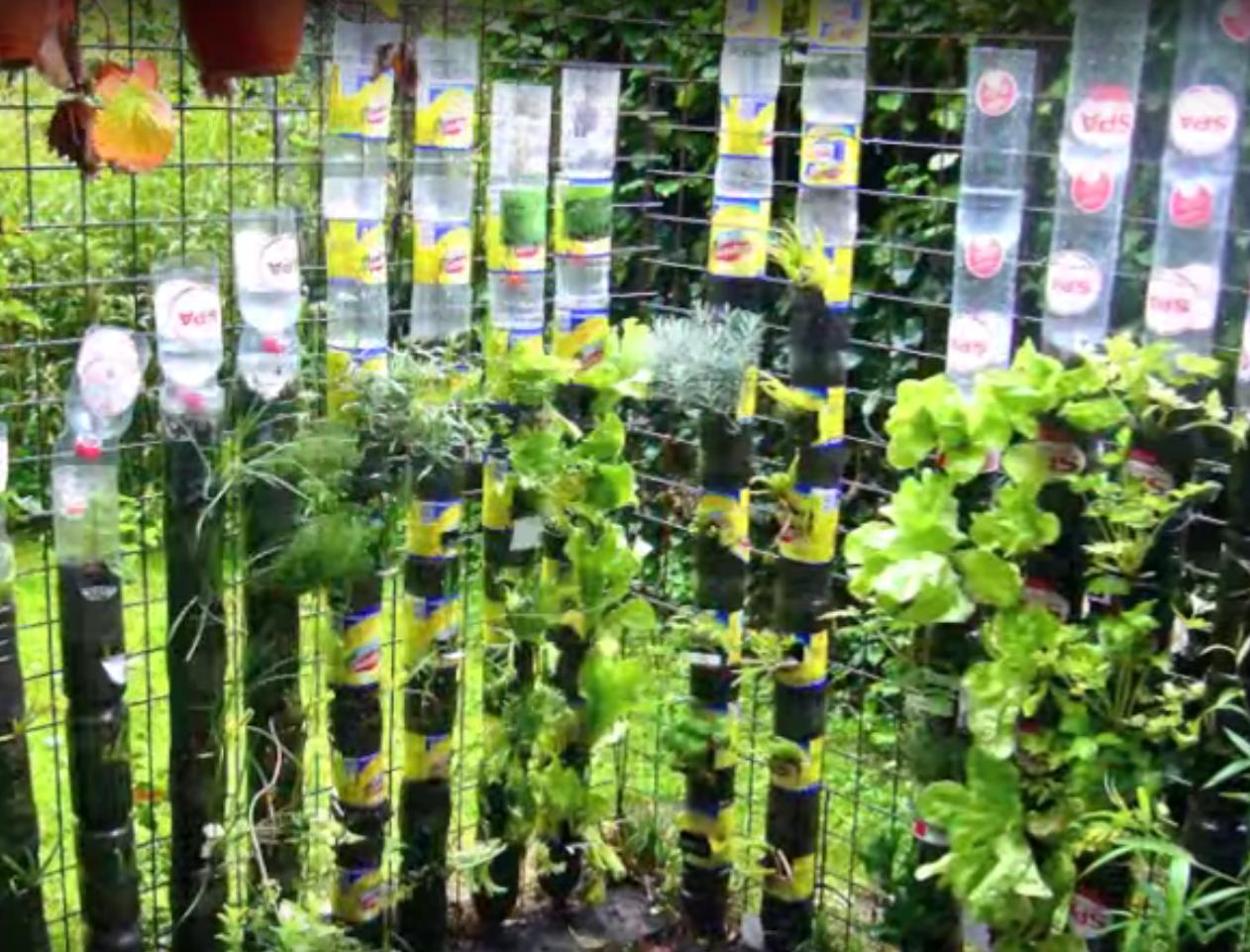 jardin_vertical_1
