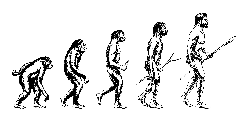 Famoso El Libro De Colorear De La Evolución Humana Composición ...