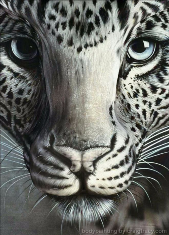 mujer oculta tigre blanco 1