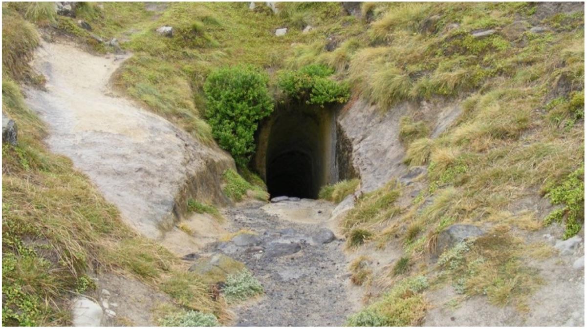 portada tunel