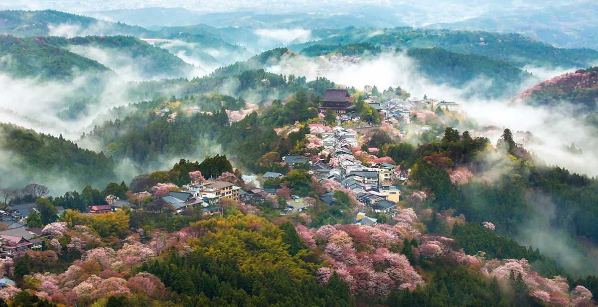 primavera-japon-fotos-cerezo